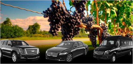 Belvedere Wine Tours Limo Service