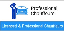 Professional Chauffeurs Belvedere
