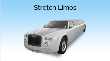 Stretch Limos Belvedere