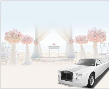 Wedding Limo Service Belvedere