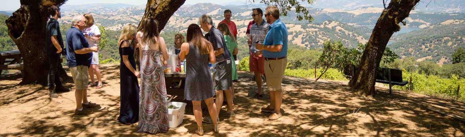 Sonoma Valley Wine Tours Belvedere