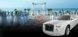 Wedding Limo Party Bus Rentals Belvedere